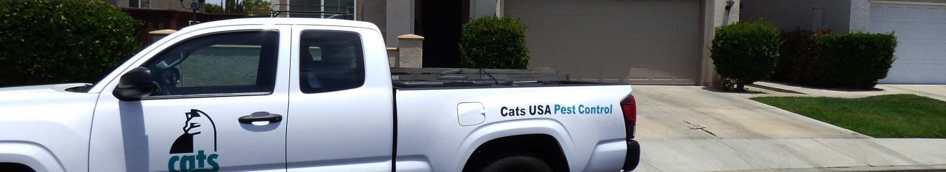 Cats USA company car